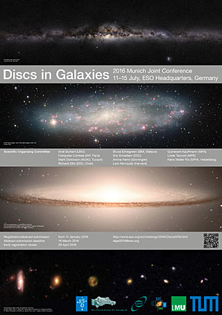Discs in Galaxies Joint Conference Poster